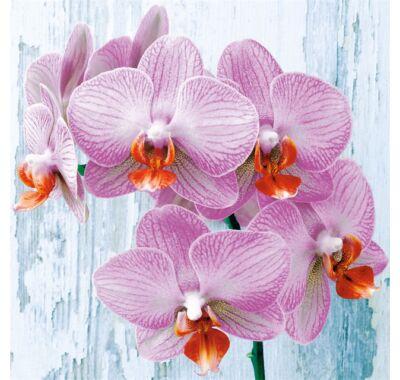 Decoupage orchidea virágos papírszalvéta 33x33cm