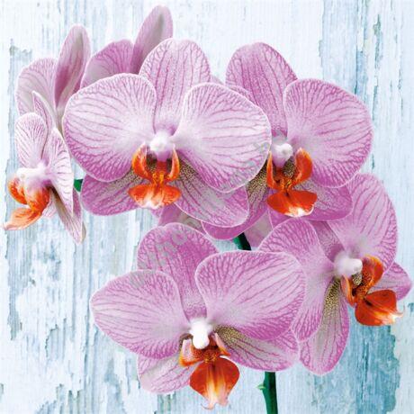 decoupage orchidea  virág mintás szalvéta